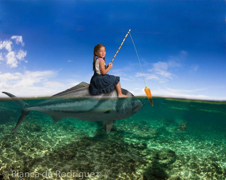 Titulo: Entrenando a mi pez.  Esta imagen es parte del proyecto 365 del 2014, si quieres ver todas las fotos entra a este link  https://goo.gl/E1jy1o  Hotmail: blancaelenabolivarleal@hotmail.es Gmail: rybfotografia@gmail.com Yahoo: blancaelenabolivar@yahoo.mx Instagram: rybfotografia