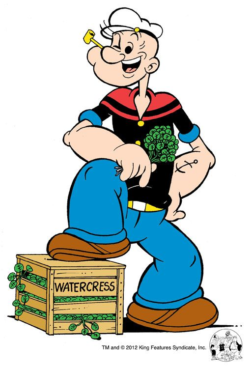Cartoon Characters Popeye : Best images about cartoon phreek popeye on pinterest