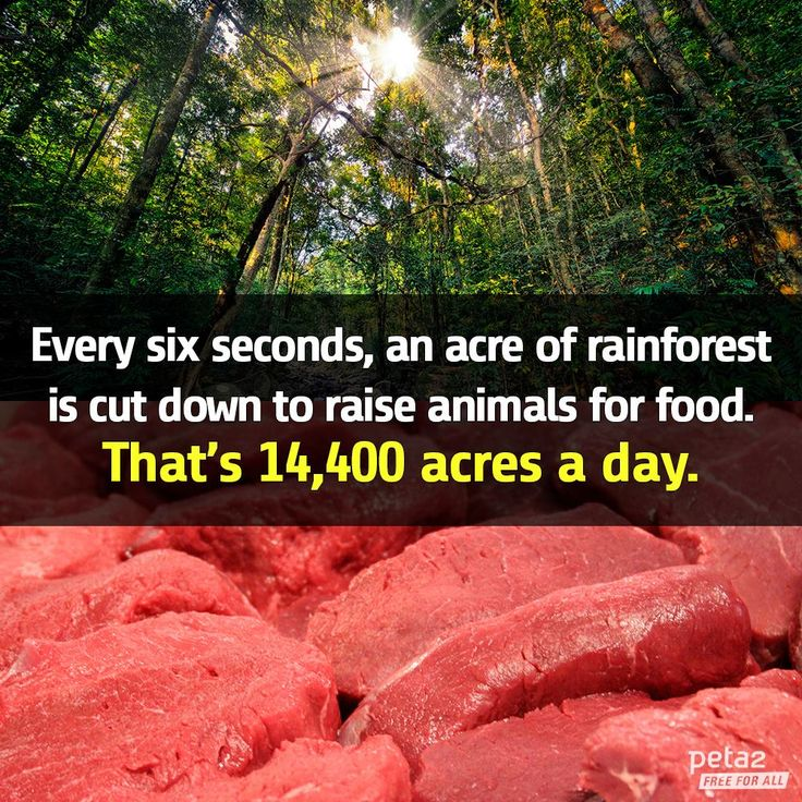 going vegan is good for:  a) The planet  b) The animals  c) Your health  d) ALL OF THE ABOVE