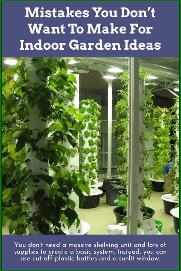 Proven Ways To Make The Garden Grow Indoor Garden Ideas