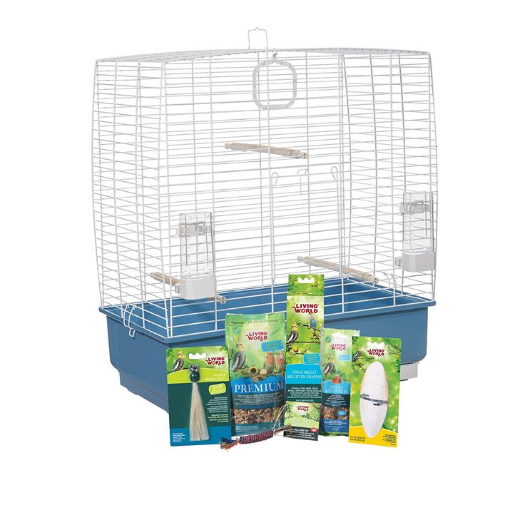 Living World 82945 Cockatiel Starter Kit ** Visit the image link more details. (This is an affiliate link and I receive a commission for the sales)