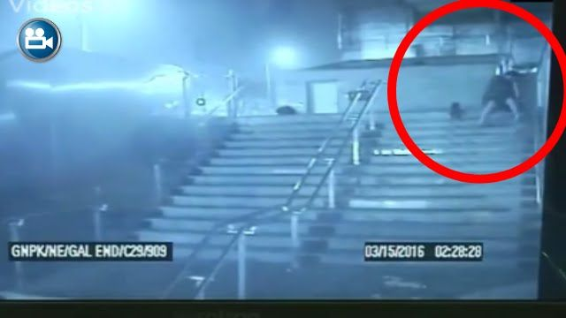 Man Brutally Killing Dog With Knife In Delhi Recorded in CCTV !! Indian ...