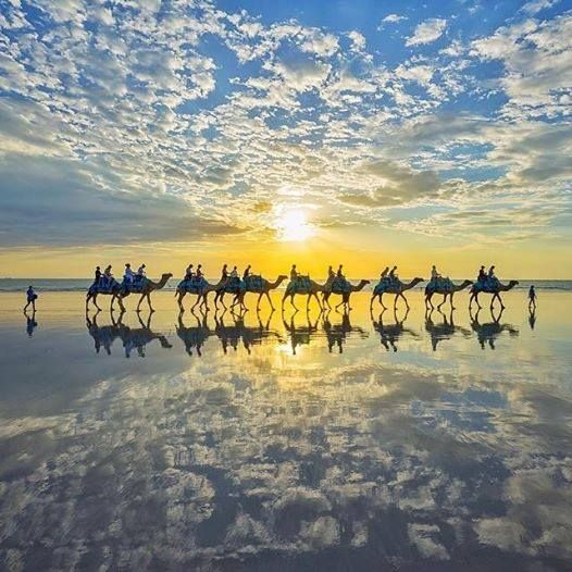 Ines Griguol · This scene shows what can only be described as a truly classic Broome experience. A camel ride along Cable Beach at sunset means that you not only get to take in every part of this 22 kilometre-long stretch of pure white sand, but you'll also witness a famous Western Australia sunset over the Indian Ocean. There's nothing like a bit of multi-tasking! Photo: Lauren Bath Services ~ Via Australia.com