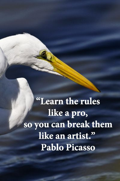 """""""Learn the rules like a pro, so you can break them like an artist.""""  Pablo Picasso – On image by F. McGinn, taken in South Carolina"""