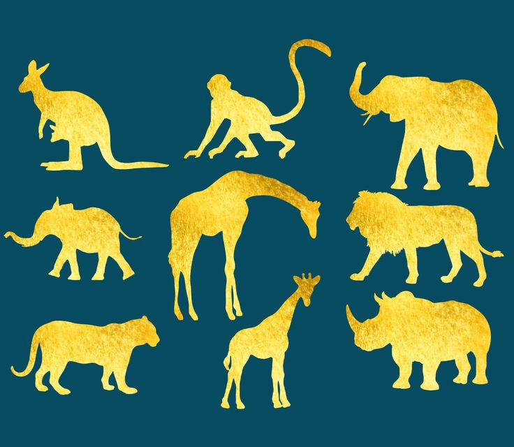 Safari Clipart (Digital Clip Art) for Instant Download. 9 PNG files on a Transparent Background. Zoo Animal Clipart to Use in your Projects. Beautiful, Affordable & Easy.  After checkout you will be directed to a page to download your files instantly. They will also be accessible at all times by vi
