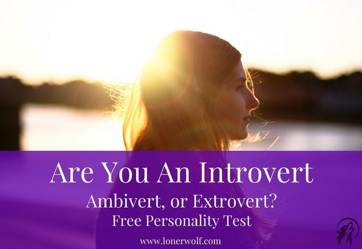 Introvert or Extrovert test image
