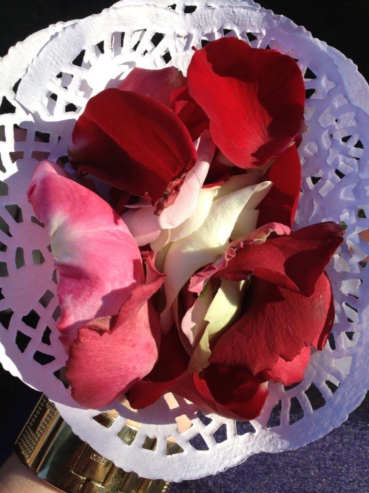 Rose petals so much prettier than confetti