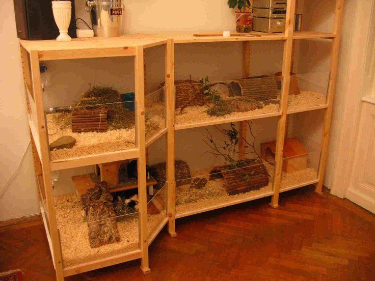 die besten 25 meerschweinchen gehege ideen auf pinterest guinea meerschweinchen k fige und. Black Bedroom Furniture Sets. Home Design Ideas