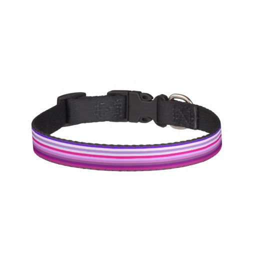 Purple and pink striped pattern pet collar