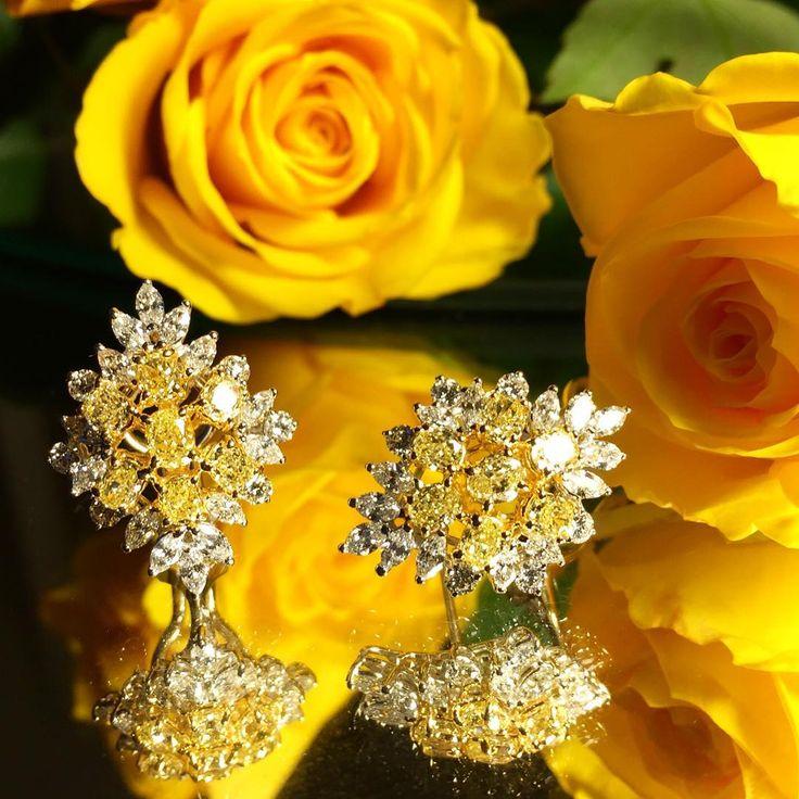 "mariopantalenaEarrings with Dark fancy yellow diamonds #gioiellipantalena #since1939. Par de brincos com diamantes brancos e amarelos ""canário"" #pantalena #mariopantalena #highjewelry #hautejoaillerie #handmadejewelry #finejewelry #schmuck #gioielli #brazilianjewelery"