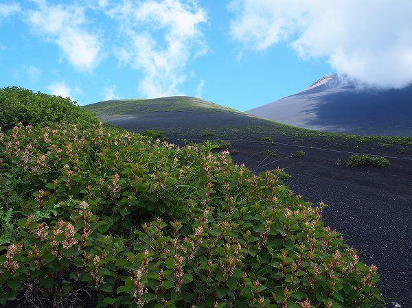 双子山 |富士山登山ルートガイド。Mount Fuji climbing route guide
