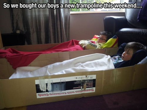 of corse: Photos, Cat, Boxes Beds, Funny Stuff, Humor, Boxes Rocks, Kids, Trampolines Boxes, Smile