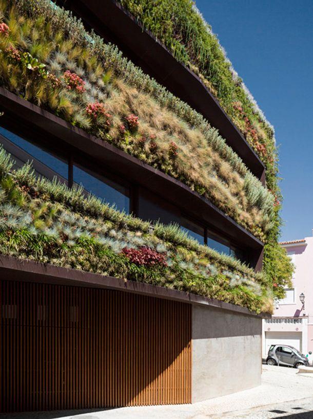 Baantjes trekken op het dak van een groene stadswoning in Lissabon