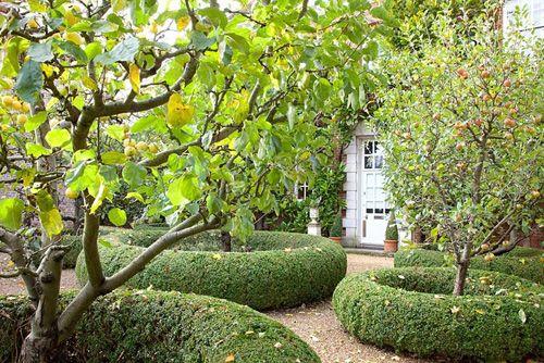 Front garden with apple trees - Malus domestica - © Elke Borkowski/GAP Photos