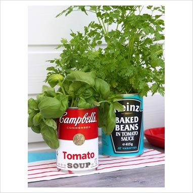 Really love this idea for kitchen herbs