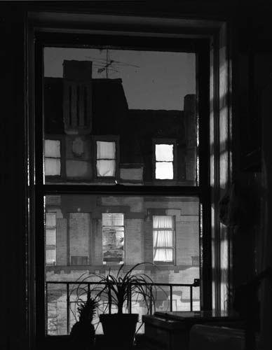 Lynn Saville  Brooklyn Window