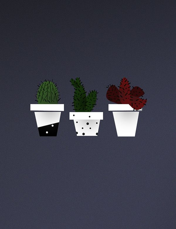 #graphicdesign #design #illustration #illustrations #pastels #portfolio #gif #myworks #behance #work #graphic #designs #olaladesigns #olaladesignsstudio #cactuslove #cactus #plant #flora #nature #lovecactus