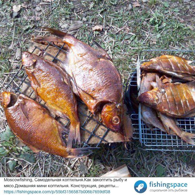 Moscowfishing, Самодельная коптильня.Как закоптить рыбу и мясо.Домашняя мини коптильня. Конструкция, рецепты...  https://fishingspace.com/p/55bf3156587b006b7659df38