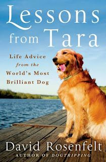 Mr. Rosenfelt credits Tara for bringing him together with his wife, for teaching him to be a better person, for being his companion and for breaking his heart.  You know – all those things dogs do when we love them.