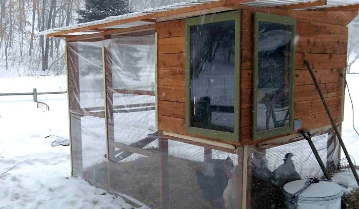 Tiny Home Designs: 17 Best Images About Chicken Coops & Duck Houses On