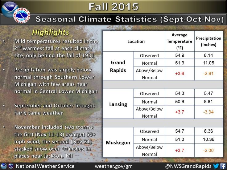 Fall 2015 second warmest on record for several Michigan