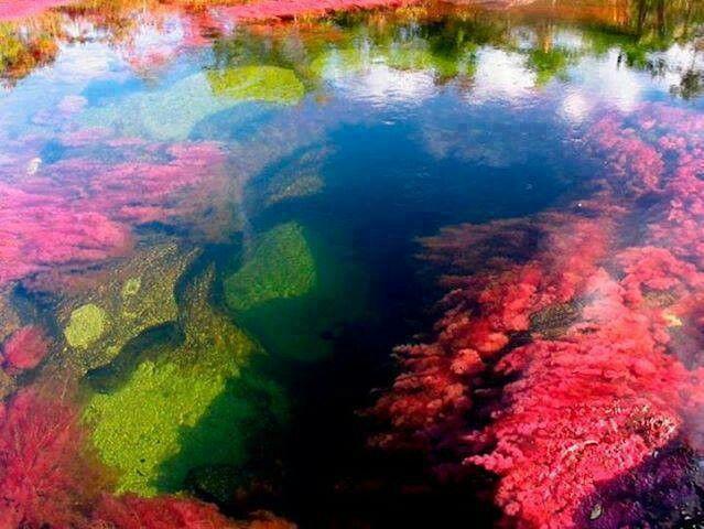 Río de 5 colores