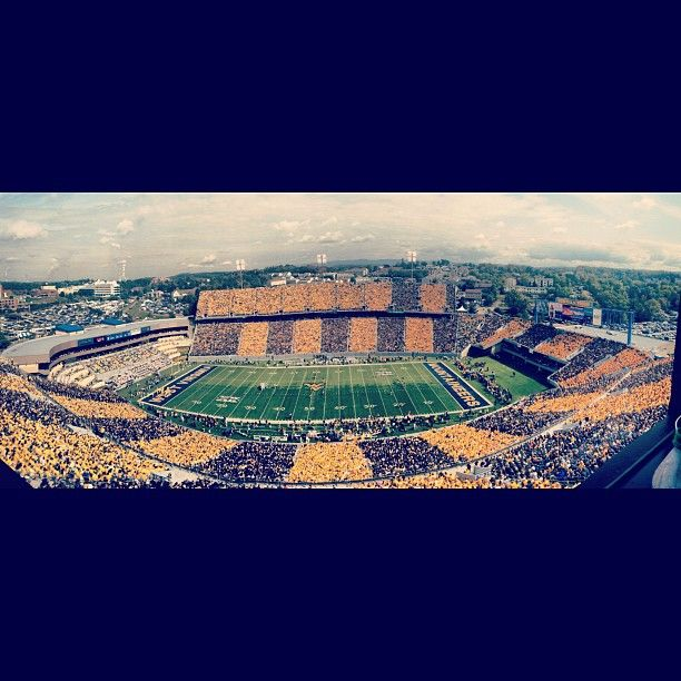 Stripe the Stadium - WVU vs. Baylor, Sept. 29, 2012 - Photo by narthurd on Instagram
