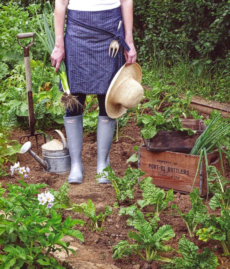 Alys Fowler *~❤•❦•:*´`*:•❦•❤~* In the garden.