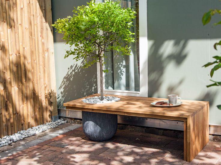 Was ist eigentlich eine Baumbank? Unter einer Baum…
