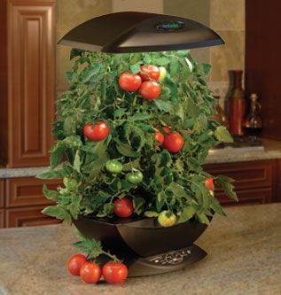 This Hydroponics device has very nice modern feel to it. And it works great. Costs about 150$ in Amazon: http://nutshellurl.com/aerogarden