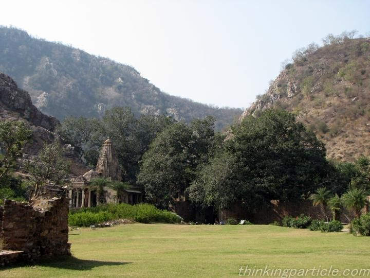 Garden at Bhangarh Premises