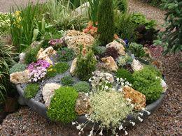 Meer dan 1000 idee n over rotsplanten op pinterest bodembedekker tuinieren en groenblijvend - Amenager een rotstuin ...
