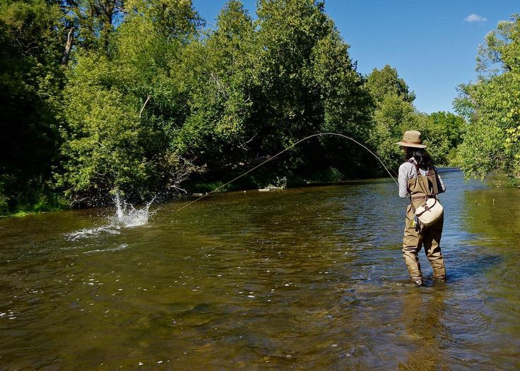 744 best fly fishing places images on pinterest fishing for Best fishing spots in colorado
