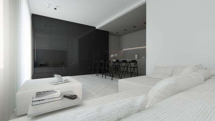 Black lacquer wall living space all white lounge all grey kitchen minimal shapes