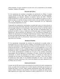 Resultado de imagen para siembra de quinchoncho en venezuela