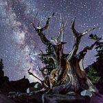 Astronomy Festival sept 10-12 Great Basin np baker, nv