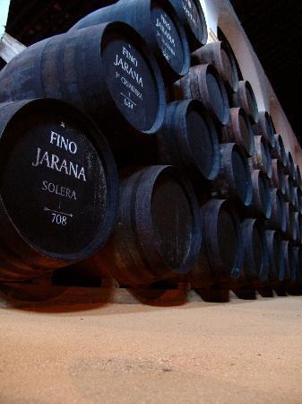 Lustau winery  Jerez de la Frontera