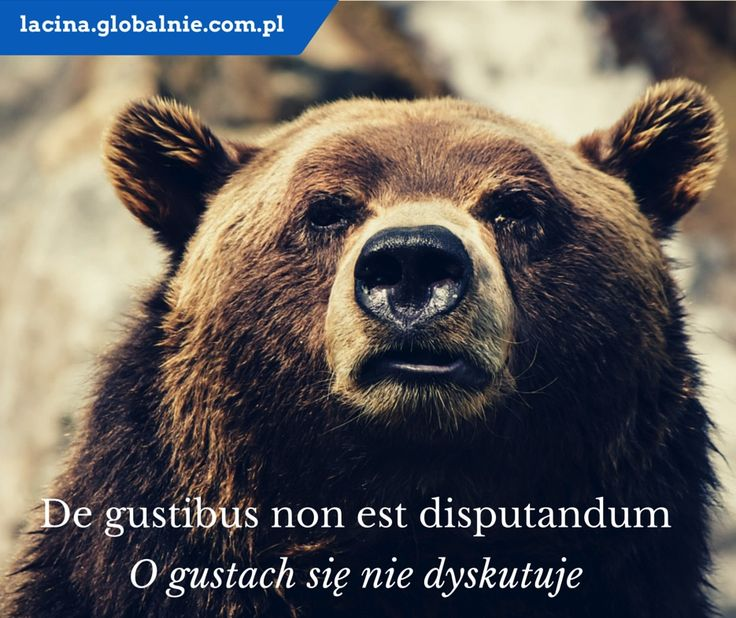 "Sentencja łacińska. Łacina: ""De gustibus non est disputandum"". Polski: ""O gustach się nie dyskutuje""."