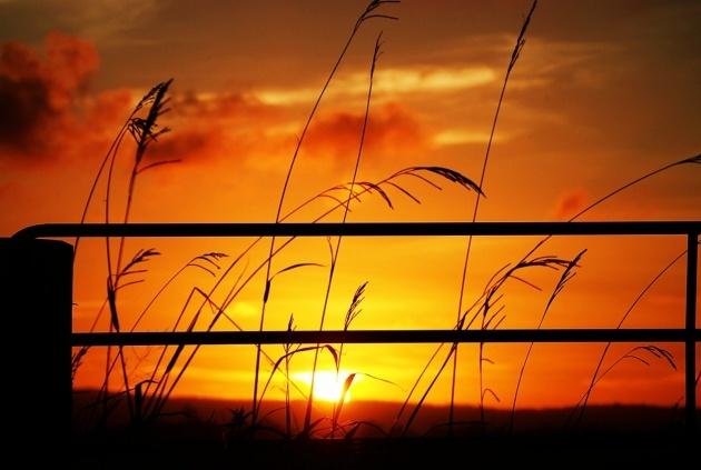 Sunset at Malaney