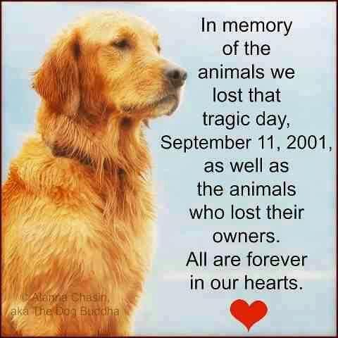 In Memory of these Beautiful Heros. Sept11 2001 <3