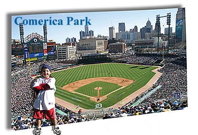 99 best images about wall murals on pinterest for Comerica park wall mural