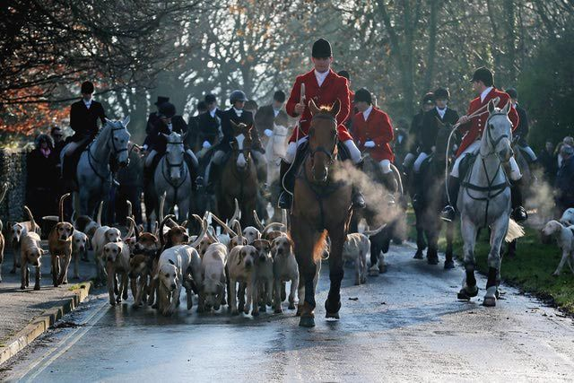 10 Things You Should Know About Boxing Day Festivities