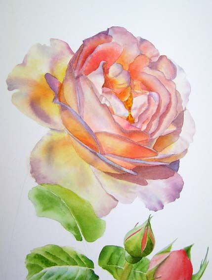 Watercolor Palette - colours for flower and rose paintings - list of watercolor hues that she uses in her paintings