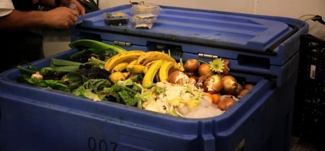 grocery store food waste screencapture