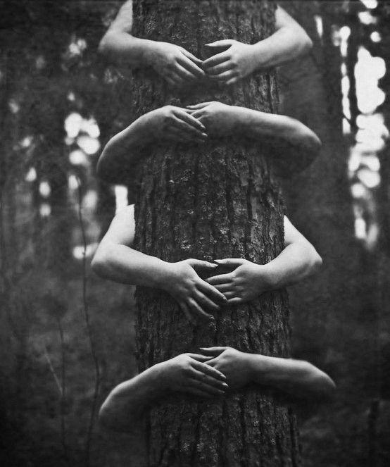 Tree hugging  ... still do