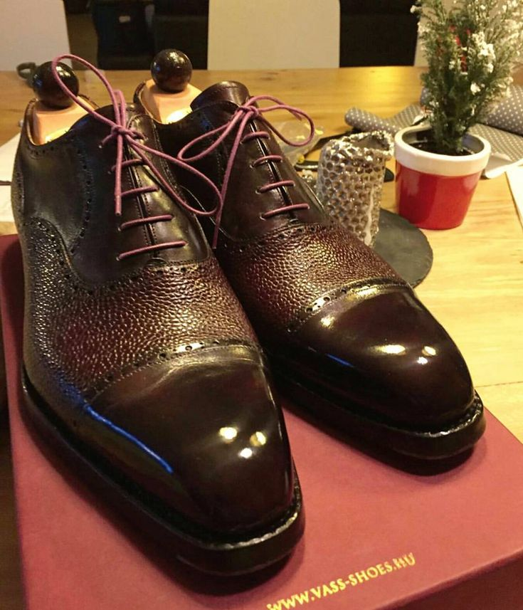Ascot Shoes — Looks like we 3 have guaranteed winners in the...