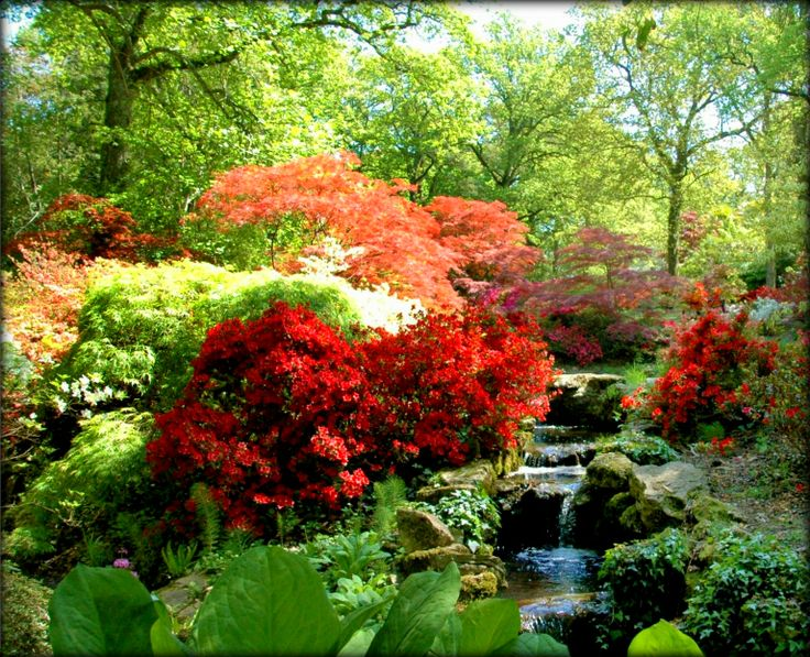Famous gardens in japan happy homemaker uk the english for Famous garden designs