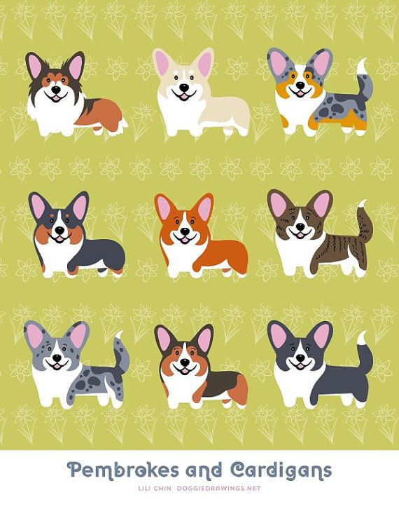 CORGIS Pembrokes and Cardigans art print by doggiedrawings on Etsy, $10.00