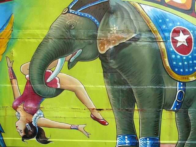India Street Graphics