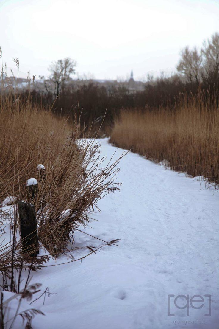 a snow covered path in Denmark - Photograph by Qe-grafik